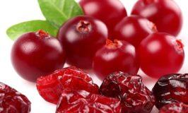 Les Canneberges (Cranberries) bienfaits, vertus et propriétés