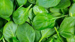 Les meilleurs aliments pour ralentir votre métabolisme