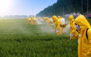 Les États-Unis sont à la traîne par rapport aux autres pays en matière de réglementation des pesticides